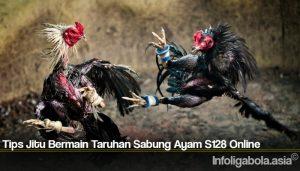 Tips Jitu Bermain Taruhan Sabung Ayam S128 Online